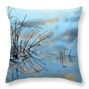 Graphics In Nature Throw Pillow