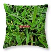 Grass Drops II Throw Pillow