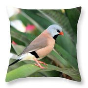 Grass Finch Throw Pillow