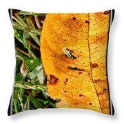 Grass Grows Through The Leaf Window Throw Pillow