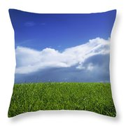 Grass In A Field, Ireland Throw Pillow by The Irish Image Collection