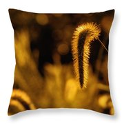 Grass In Golden Light Throw Pillow