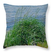 Grass On The Beach Throw Pillow