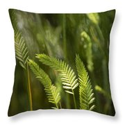 Grass Stems And Seed No.2129 Throw Pillow