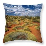 Grass Triodia Sp Covering Sand Dunes Throw Pillow