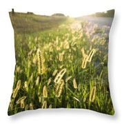 Grasses On A Nebraska Farm Throw Pillow