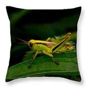 Grasshopper 2 Throw Pillow
