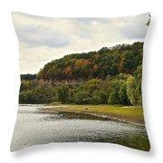 Grassy Beach Throw Pillow