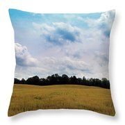 Grassy Country Fields Throw Pillow
