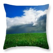 Grassy Field, Ireland Throw Pillow by The Irish Image Collection