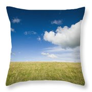 Grassy Field On Hill With Blue Skies Throw Pillow