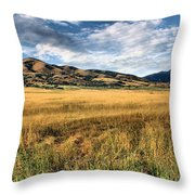 Grassy Plains And Ancient Dunes Throw Pillow