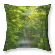 Gravel Road, Niagara Region, Pelham Throw Pillow