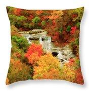 Graveyard Fields Lower Falls Throw Pillow