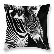 Gravy Zebra Throw Pillow