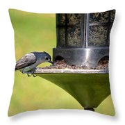 Gray Feathered Throw Pillow