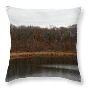 Gray Lake Throw Pillow