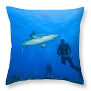 Gray Reef Shark With Divers, Papua New Throw Pillow