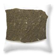 Graywacke Throw Pillow