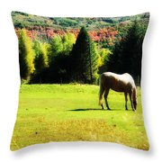 Grazing Autumn Throw Pillow