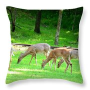 Grazing Doe Throw Pillow