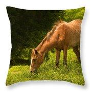 Grazing Horse Throw Pillow