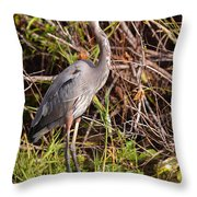 Great Blue Heron And Turtle Throw Pillow