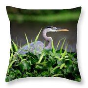 Great Blue Heron Hiding In The Grasses Throw Pillow
