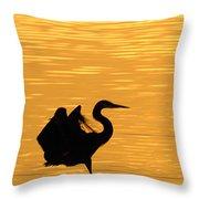 Great Blue Heron Landing In Golden Light Throw Pillow
