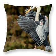 Great Blue Heron Landing Throw Pillow