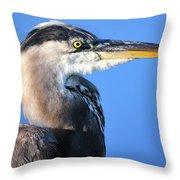 Great Blue Heron Portrait Blue Throw Pillow