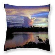 Great Blue Heron Sunset Throw Pillow