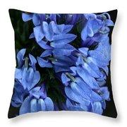 Great Blue Lobella Throw Pillow