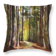 Great Brook Farm Summer Path Throw Pillow