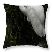 Great Egret 3 Throw Pillow