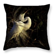 Great Egret In Great Light Throw Pillow