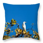 Great Egret On Watch Throw Pillow