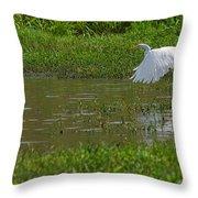 Great Egret Takeoff 2 Throw Pillow