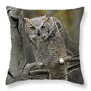 Great Horned Owl Pale Form Kootenays Throw Pillow