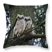 Great Horned Owls Young Throw Pillow