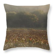 Great Meadows National Wildlife Refuge Blue Heron Fog Throw Pillow