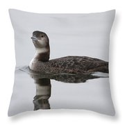 Great Northern Diver Throw Pillow