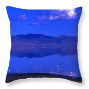 Great Salt Lake From Causeway Throw Pillow