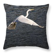 Great White Egret Flight Series - 10 Throw Pillow