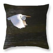 Great White Egret Flight Series - 3 Throw Pillow