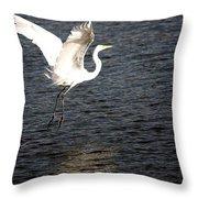 Great White Egret Flight Series - 9 Throw Pillow