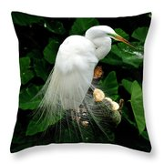 Great White Egret With Breeding Plumage Throw Pillow