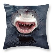 Great White Shark Smile Australia Throw Pillow by Mike Parry