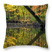 Greater Than Throw Pillow