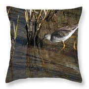 Greater Yellowlegs At Spi Throw Pillow